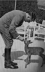 http://en.wikipedia.org/wiki/Image:Hitlerwithdeer.GIF