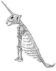 http://en.wikipedia.org/wiki/Image:Unicornhoax.jpg