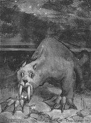 http://en.wikipedia.org/wiki/Image:Bigteeth-1-.jpg