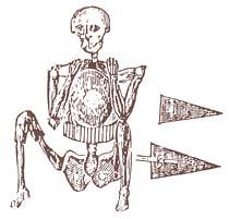 http://commons.wikimedia.org/wiki/File:Skeleton_in_armor.jpg