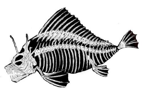 http://en.wikipedia.org/wiki/Image:Beebe%27s_monster_copy.jpg