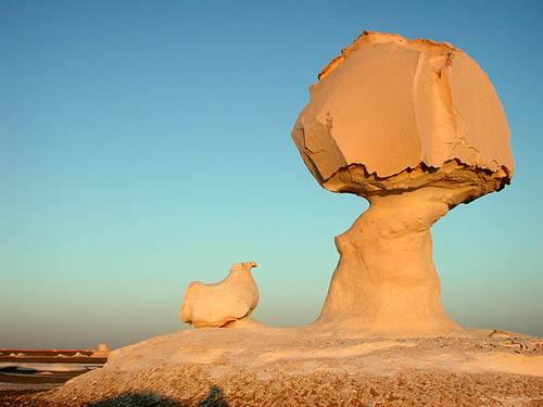 http://en.wikipedia.org/wiki/Image:Mushroom_rocks.jpg