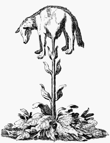 http://commons.wikimedia.org/wiki/File:Vegetable_lamb_(Lee,_1887).jpg