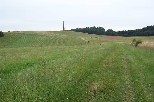 http://en.wikipedia.org/wiki/Image:Wychbury_Hill.jpg