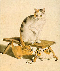 http://commons.wikimedia.org/wiki/File:Gottfried_Mind_Katzen.jpg