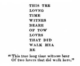 tree inscription