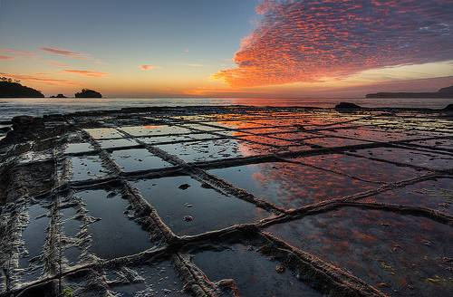 http://commons.wikimedia.org/wiki/File:Tessellated_Pavement_Sunrise_Landscape.jpg