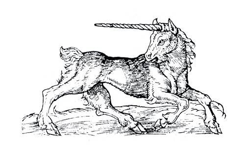 http://commons.wikimedia.org/wiki/File:Unicornis.png