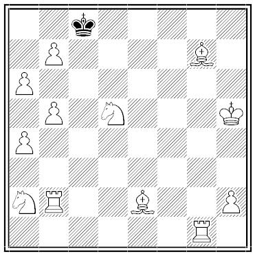 nelson chess maze