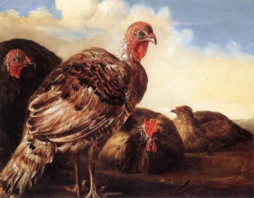 http://commons.wikimedia.org/wiki/File:Aelbert_Cuyp_Domefowl.jpg