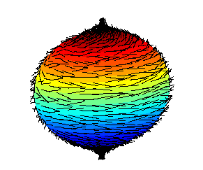 http://commons.wikimedia.org/wiki/File:Hairy_ball.png
