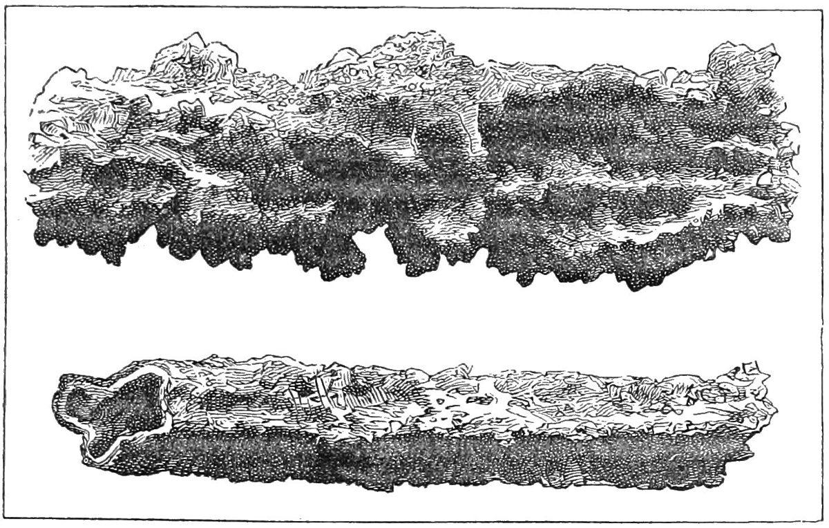 http://commons.wikimedia.org/wiki/File:Fulgurite1.jpg