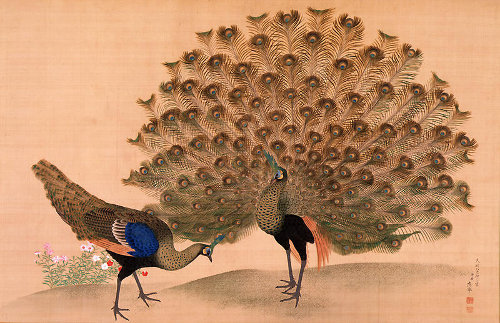 http://commons.wikimedia.org/wiki/File:Okyo_Peacock_and_Peahen.jpg
