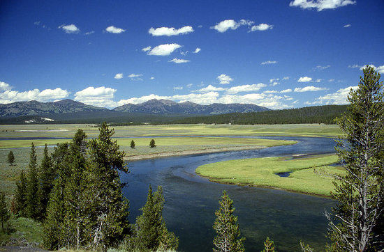 http://commons.wikimedia.org/wiki/File:Yellowstone_River_in_Hayden_Valley.jpg