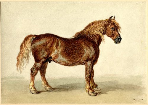 http://commons.wikimedia.org/wiki/File:A_Cart-horse_by_James_Ward_watercolour.jpg
