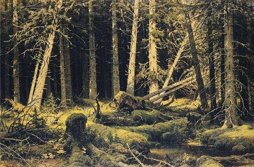 http://commons.wikimedia.org/wiki/File:Ivan_Shishkin_-_Wind-Fallen_Trees.JPG