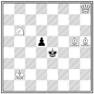 fleischmann chess problem