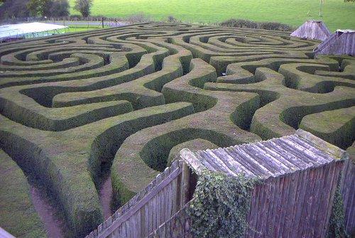 http://commons.wikimedia.org/wiki/File:Longleat_maze.jpg