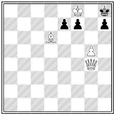 shinkman chess problem