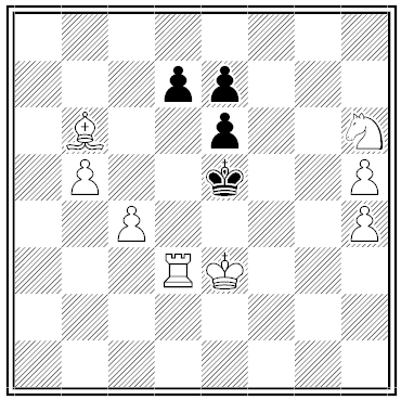 Bachmann chess problem