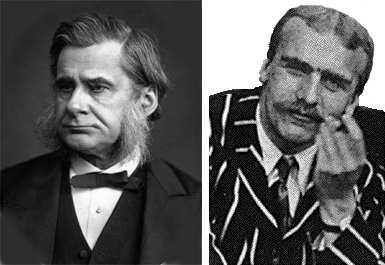 http://commons.wikimedia.org/wiki/File:T.H.Huxley(Woodburytype).jpg