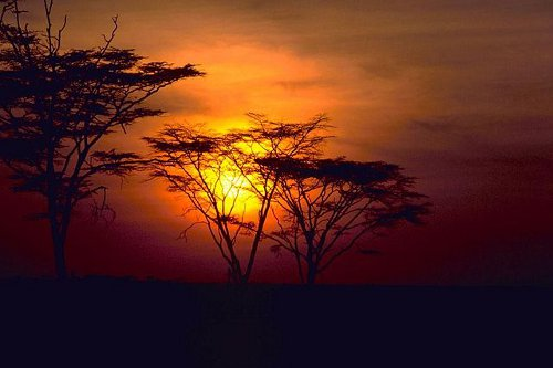 http://commons.wikimedia.org/wiki/File:African_sunset.jpg