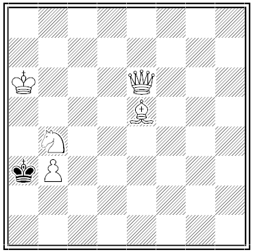 roegner chess problem