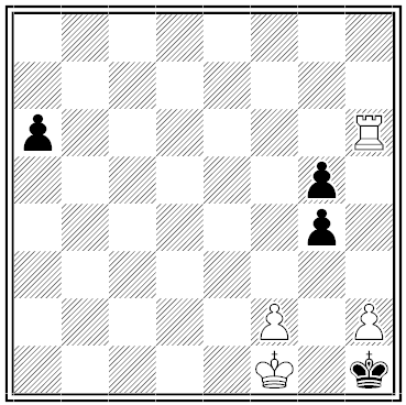 von wardener chess problem