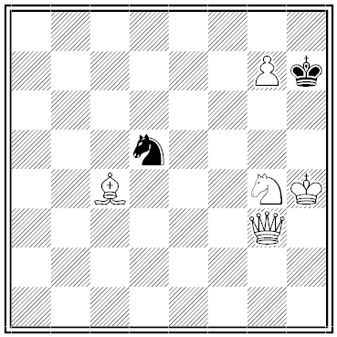 havel chess problem