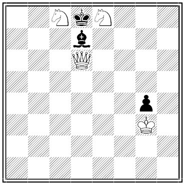 hoeg chess problem