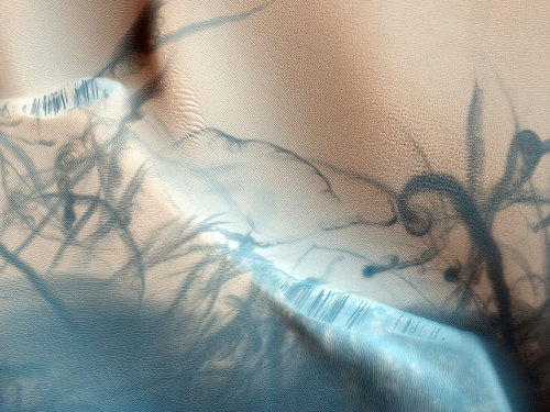 http://commons.wikimedia.org/wiki/File:Martian_Dust_Devil_Trails.jpg