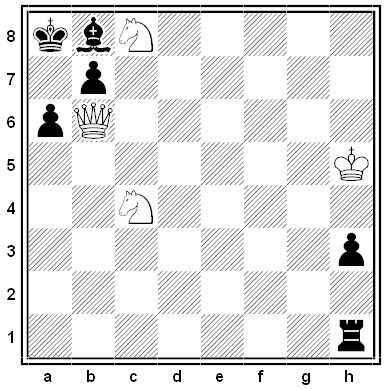 larsen chess problem