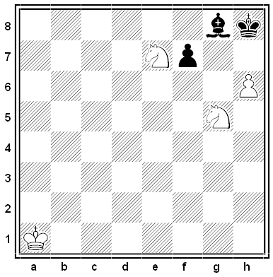 erlinger chess problem