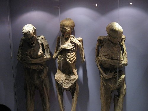 http://commons.wikimedia.org/wiki/File:Mummy04_guanajuato.jpg