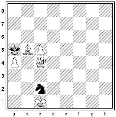 meyer chess problem