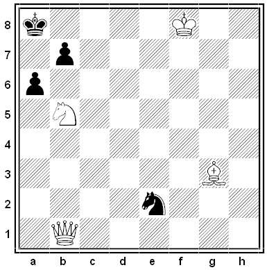 drnek chess problem