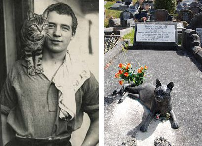 http://commons.wikimedia.org/wiki/File:Harry_McNeish_Gravestone_cat.jpg