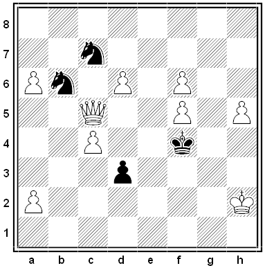 projective chess 2