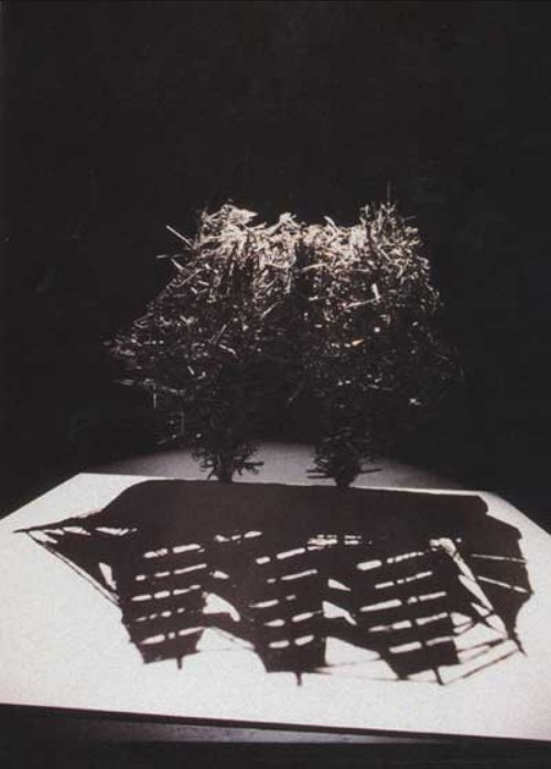 shigeo fukuda - one cannot cut the sea