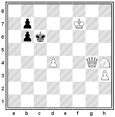 petkovic chess problem