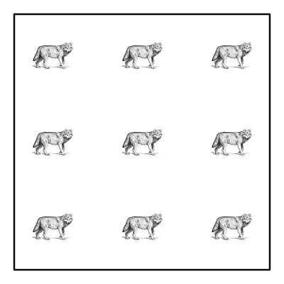 separate quarters puzzle