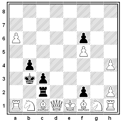 kirtley chess problem - solution