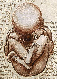 https://commons.wikimedia.org/wiki/File:Views_of_a_Foetus_in_the_Womb_detail.jpg