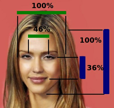 https://commons.wikimedia.org/wiki/File:Jessica_Alba_Face_Proportions.png