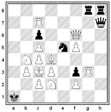 pradignat chess problem