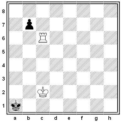shinkman chess problem