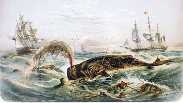 https://commons.wikimedia.org/wiki/File:Amerikanischer_un_franz%C3%B6sischer_Walfang_vor_Mexico_(1848).jpg