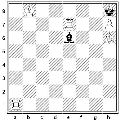 von meyenfeldt chess puzzle