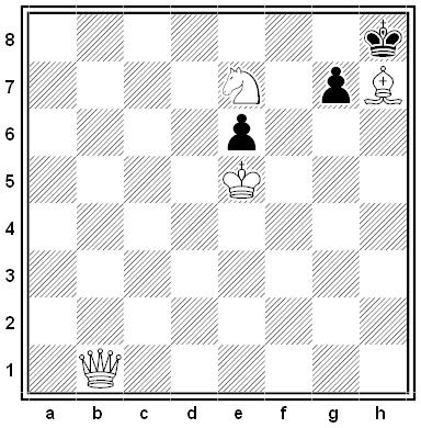 steinweg chess problem