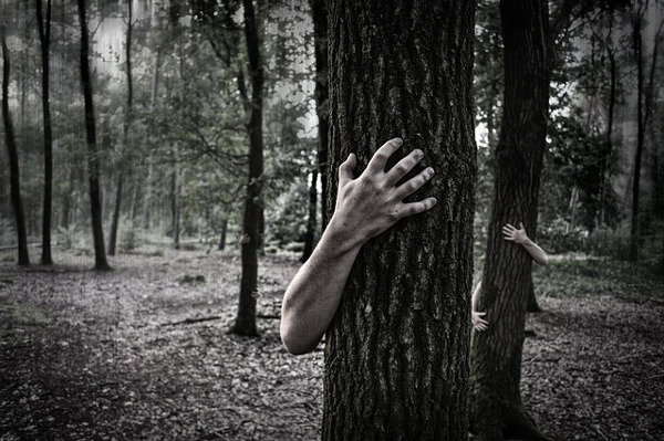 https://pixabay.com/en/hands-trunk-creepy-zombies-forest-984032/